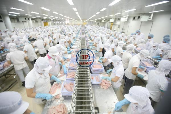 An toàn cho công nhân chế biến ở nhà máy lạnh đông thực phẩm